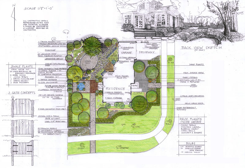 Barbara simon landscape design for Garden design sketches